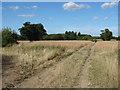 SU9549 : Footpath across the fields by Alan Hunt