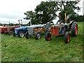 SJ1901 : Berriew Show - elderly tractors by Penny Mayes