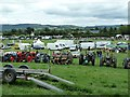 SJ1901 : Berriew Show 2013 by Penny Mayes