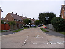 TL7204 : Rothmans Avenue, Great Baddow by Adrian Cable