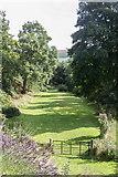 SO1252 : The Meadow, Edw View, Cregrina, Powys by Christine Matthews
