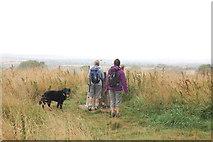 SU6022 : Trig point on Beacon Hill by Trevor Harris