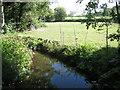 SP1269 : The young River Alne below the Mill House by Robin Stott