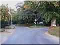 TM0981 : Bressingham Road, Baynard's Green by Adrian Cable