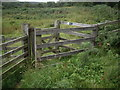 NY9598 : Kissing Gate on path to Darden Lough by Stanley Howe