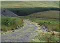 SH5459 : Forestry road below Cefn-du by Trevor Littlewood