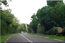 N7377 : The R164 north of the junction with the Whitecommons Road by Eric Jones