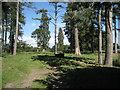 SP1370 : Umberslade Park near South Lodge by Robin Stott