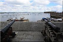 SY6874 : Portland Castle cannon by John Stephen