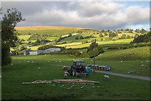 SO1252 : Farmland near Cregrina Bridge over the River Edw by Christine Matthews