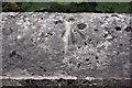 NY6100 : Benchmark on the NE parapet of Salterwath Bridge by Roger Templeman