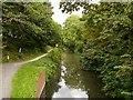 SK8833 : Grantham Canal, Harlaxton by David Dixon