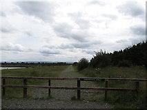 N2120 : Finnamore's Walk at the Lough Boora Parklands by Eric Jones