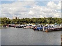 SK7954 : The King's Marina, Newark-on-Trent by David Dixon