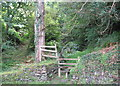 SS6949 : The path to Six Acre Wood-Lee Abbey, North Devon by Martin Richard Phelan