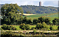 J4569 : Low drumlins, Comber by Albert Bridge