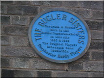 SY6990 : Blue plaque in South Street by Basher Eyre