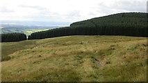 NN9701 : Path on Commonedge Hill by Richard Webb