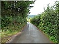 SO3304 : Llan Lane heading down to Star Road by Christine Johnstone
