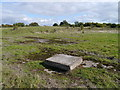 NS4666 : Concrete Cover, Former Walkinshaw Brickworks Site by James T M Towill