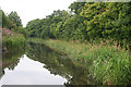 NS9576 : Union Canal from Bridge 51 by Anne Burgess