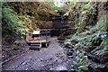 TQ8011 : Little Roar Gill, St Leonards by Peregrine