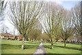 SU8650 : Manor Park by N Chadwick