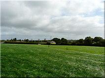 R5602 : Grass paddock with farm in background R5702 by derek menzies