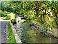 SD8706 : Middleton, Whit Brook by David Dixon