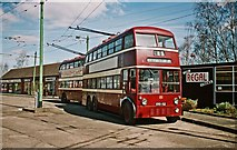 SE7408 : The Trolleybus Museum at Sandtoft - Two Reading trolleybuses 181 & 113, near Sandtoft, Lincs by P L Chadwick