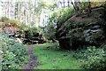 SJ5467 : Urchin's Kitchen in Primrosehill Wood by Jeff Buck