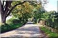 SJ5367 : Tirley Lane at Summertrees by Jeff Buck