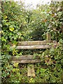 ST6823 : Stile on Monarch's Way by Derek Harper