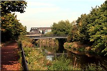 SK3889 : Five Weirs Walk and River Don at Amberley Street Footbridge by Graham Hogg