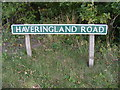 TG1520 : Haveringland Road sign by Adrian Cable