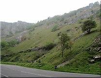 ST4754 : Cheddar Gorge by Ian Rob
