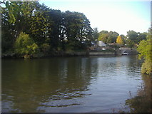 TQ1672 : The south end of Eel Pie Island by David Howard