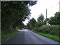 TG1913 : Hall Lane, Horsford by Geographer