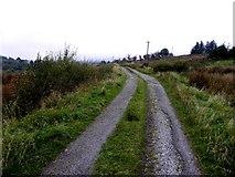 H1119 : Road at Lannanaria by Kenneth  Allen