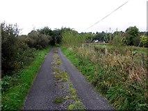 H1117 : Road at Garryfluigh by Kenneth  Allen