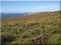 NG2754 : Waternish peninsula, west facing slope by Richard Dorrell