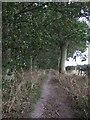 TA1366 : Bridleway towards Woldgate  by JThomas