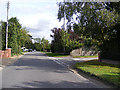 TG2503 : Caistor Lane, Caistor St.Edmund by Adrian Cable