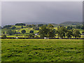 NY5217 : Fields by Bomby Farm by Nigel Brown