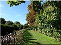TV6099 : Manor Gardens, Eastbourne by PAUL FARMER