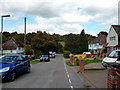 TQ2555 : Kingswood:  Monkswell Lane by Dr Neil Clifton