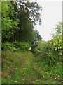 NU0336 : Farm track along edge of Finis Wood by Graham Robson