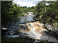 NY9027 : Low Force, River Tees by G Laird