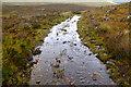 NG8816 : Track to Suardalan by Tom Richardson