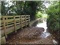 SY0280 : Footpath bridge and ford through Littleham Brook by David Smith